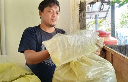 Decky KRATOM Supplier of West Kalimantan