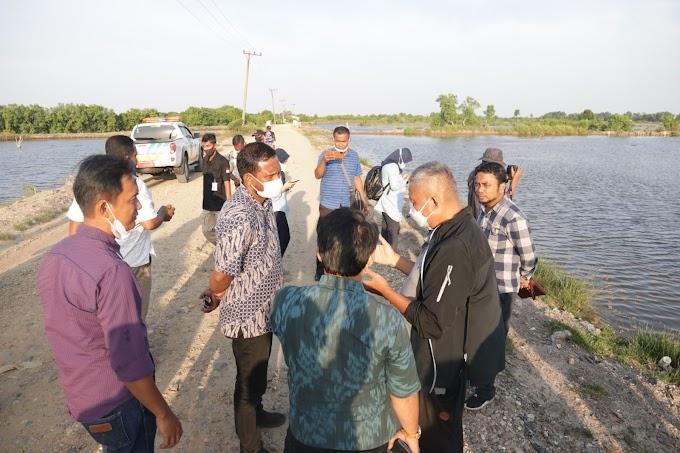 KKP Turunkan Tim Survei Untuk Shirmp Estate Di Aceh Timur