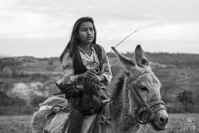 niña montando mula
