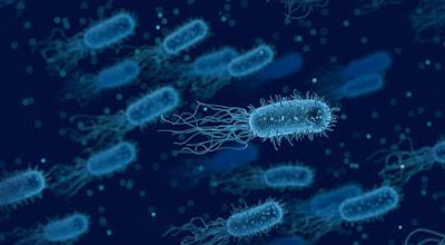 Asal Bakteri Jahat yang Bersarang Dalam Tubuh Manusia