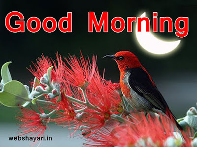 good morning image for whatsapp in hindi