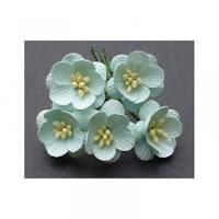 http://scrapkowo.pl/shop,mkx-063-kwiaty-wisni-odcien-miety-5szt-,4832.html