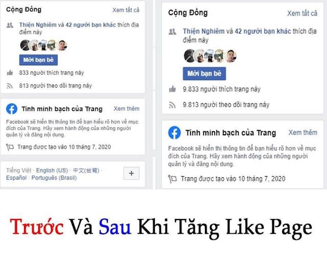 Trước và sau khi tăng like page