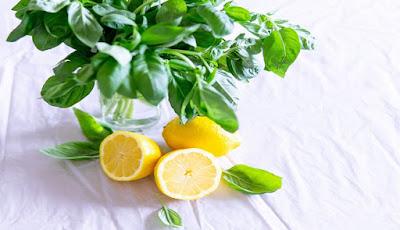 manfaat buah jeruk lemon untuk sehatan dan kecantikan