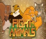fight-of-animals