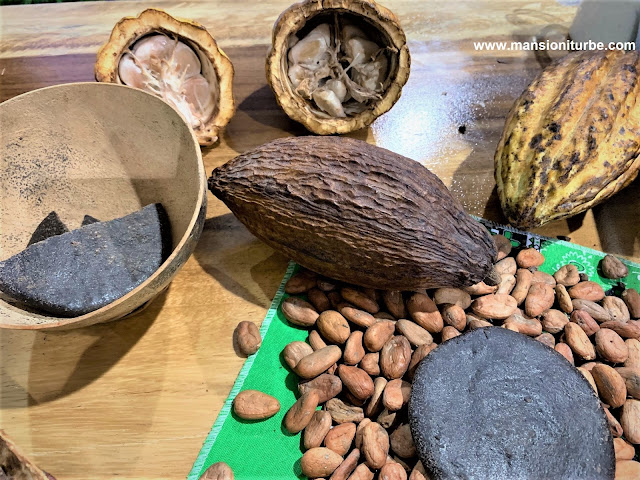 Mexican Cocholate and Caco Seeds