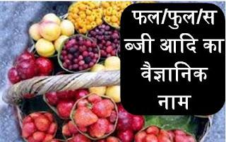 [Hindi] फल/फुल/सब्जी आदि का वैज्ञानिक नाम - समान्य ज्ञान