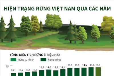 TẠI SAO diện tích rừng thay đổi?