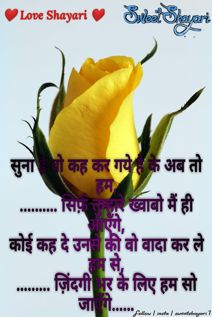 hindi love shayari top 50 love shayari, latest love shayari, sweet shayari