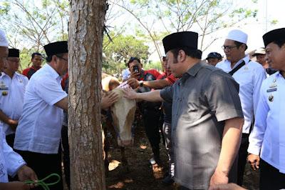 Hewan Qurban untuk Kecamatan se-Lampung Selatan Mulai Didistribusikan