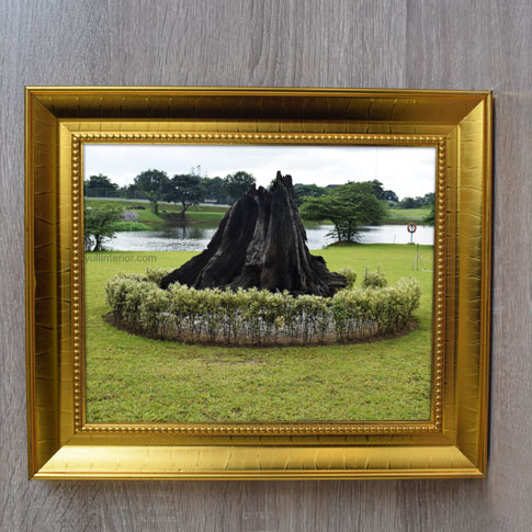 Nature Framed Print, Wall Frame, Wall Art in Port Harcourt, Nigeria