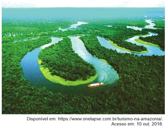 Observe a imagem de um trecho da maior floresta