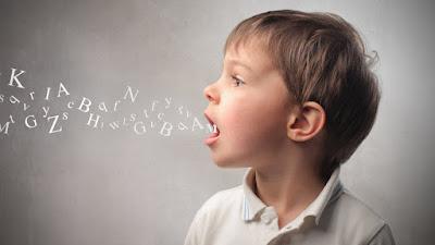 Programas de tratamento de patologia da fala
