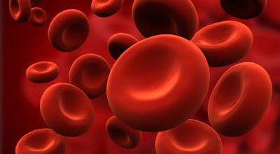 Entenda a hemofilia e os cuidados que seu portador deve manter no dia-a-dia