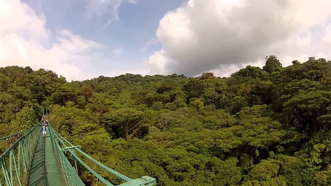 Selvatura Park в Монтеверде, Коста-Рика