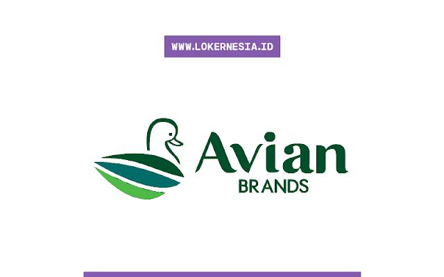 Lowongan Kerja Management Trainee Avian Desember 2020