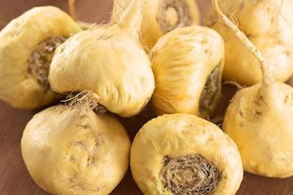 Manfaat Maca bagi pria: 7 manfaat Luar  biasa makanan super dari Peru