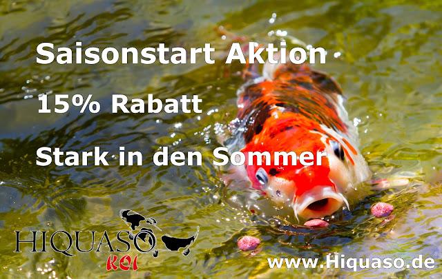 Hiquaso Koifutter 15% - Rabatt Aktion - Stark in den Sommer