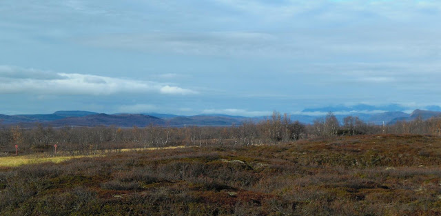 Thawing permafrost peatlands may add to atmospheric CO2 burden