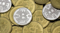 Panel to suggest norms for Bitcoins, virtual currencies