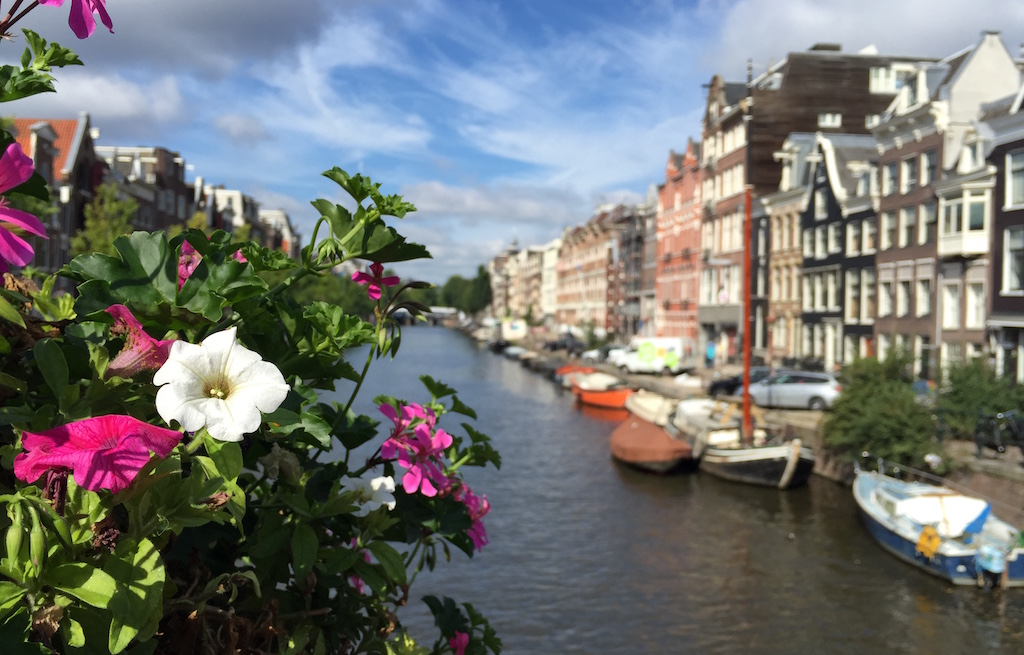 Journey to Desert and Arctic - Canal in Prinsengracht, Amsterdam