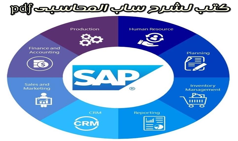شرح برنامج ساب SAP المحاسبى بالعربى