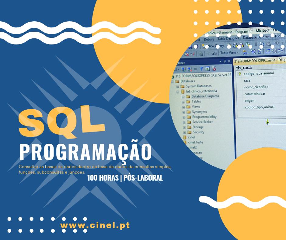 Curso de Programação na linguagem SQL em Lisboa