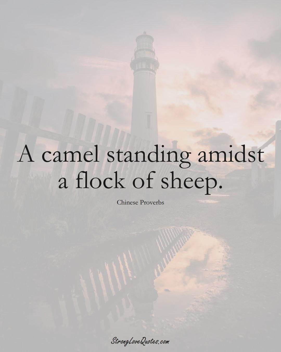 A camel standing amidst a flock of sheep. (Chinese Sayings);  #AsianSayings