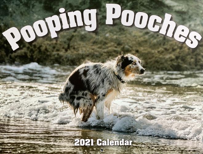 Ya está a la venta el calendario 2021 de perretes cagando.