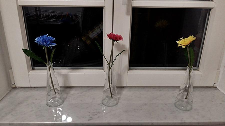 wupperbaers b ren und anderes getier ein besuch bei. Black Bedroom Furniture Sets. Home Design Ideas