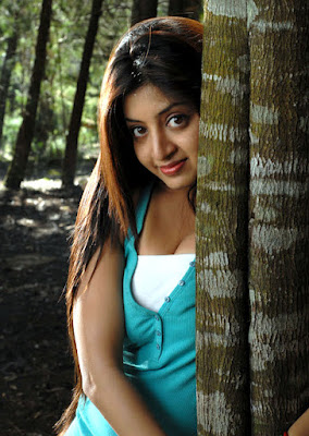 Poonam Kaur hot cleveage photos