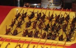 serangga goreng