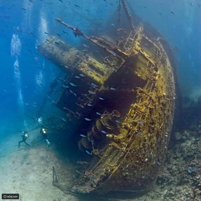 حطام سفينة تجارية، البحر الأحمر