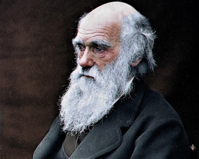 """تشارلز داروين (1809-1882) أصل الأنواع """"نظرية التطور"""""""