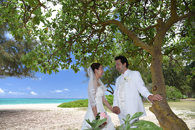 Hawaii Wedding Photos