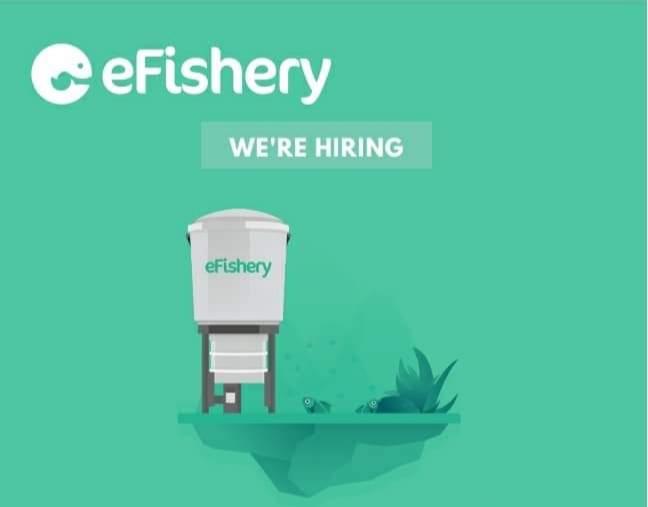 Lowongan Kerja Field Activator di eFishery Pati