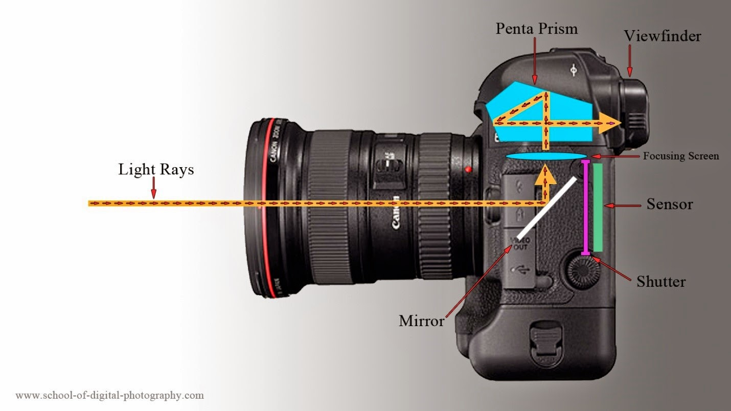 Slr Camera Diagram Simple Home Electrical Wiring How Digital Cameras Work A Works