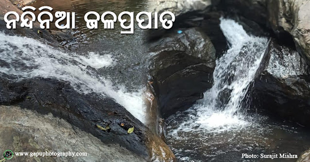 Nandinia - An Unexplored Waterfall of Hindol, Odisha
