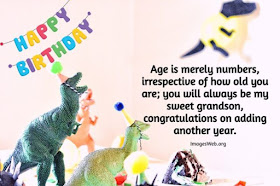 Funny Happy Birthday Wishes for Grandson