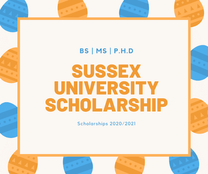 University of Sussex study abroad: Sussex University Scholarships