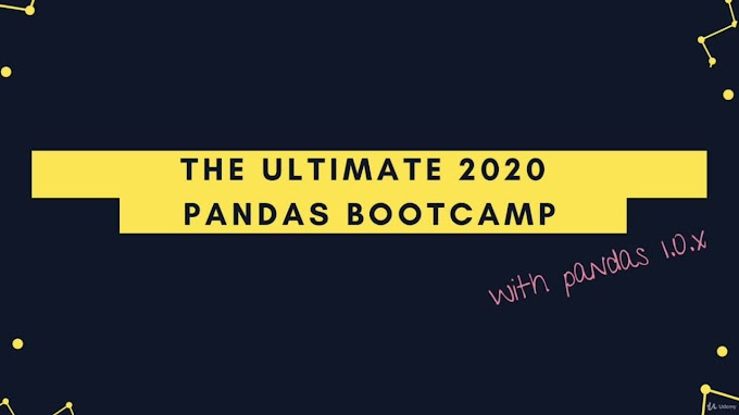 The Ultimate Pandas Bootcamp: Advanced Python Data Analysis