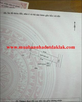 Bán đất Xã Cư Suê Huyện Cư M'gar Dak Lak 279 triệu