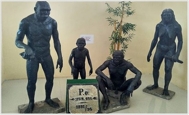 Museum Trinil;10 Top Destinasi Wisata Ngawi;