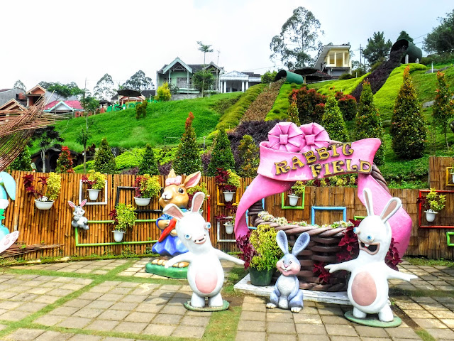Rabbit Park Full of Photo Spots and Education