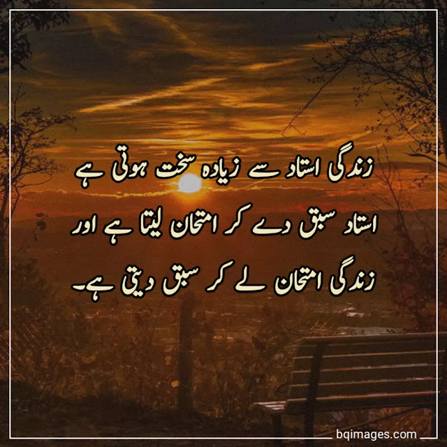 real life quotes in urdu