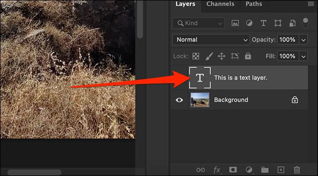 تم نسخ طبقة إلى مستند ثانوي في نافذة Photoshop.