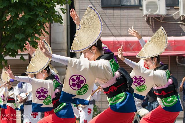 江戸っ子連、女踊り、マロニエ祭り流し踊り中の演舞の写真 その7