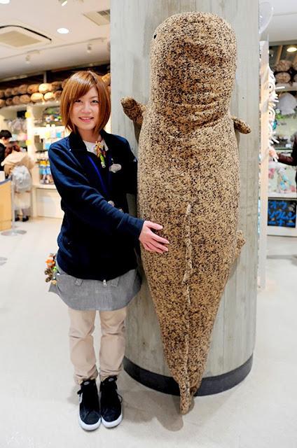 可愛い?京都水族館の巨大なオオサンショウウオぬいぐるみ!【i】