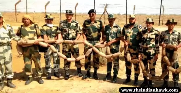 Rajasthan: BSF Foils Attempt by Pak Smugglers, Recovers 56 KG Heroin