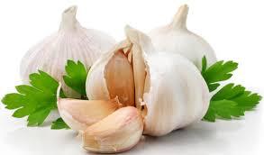 Did you know that garlic lowers your high blood pressure?  వెల్లుల్లి మీ హై బ్లడ్ ప్రెజర్ ను తగ్గిస్తుందన్న విషయం మీకు తెలుసా...??